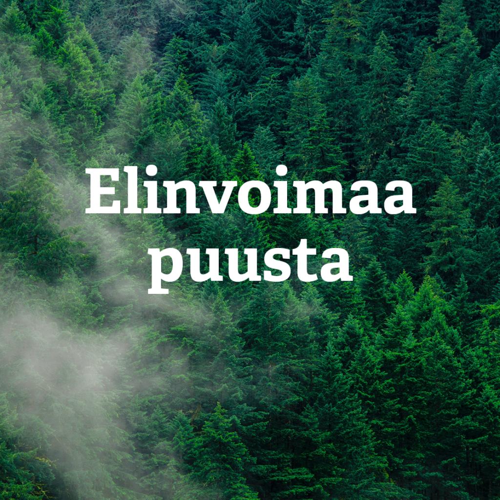 Vaaran uusi slogan: Elinvoimaa puusta